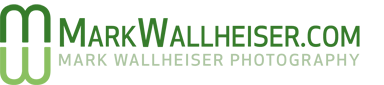 Mark Wallheiser logo